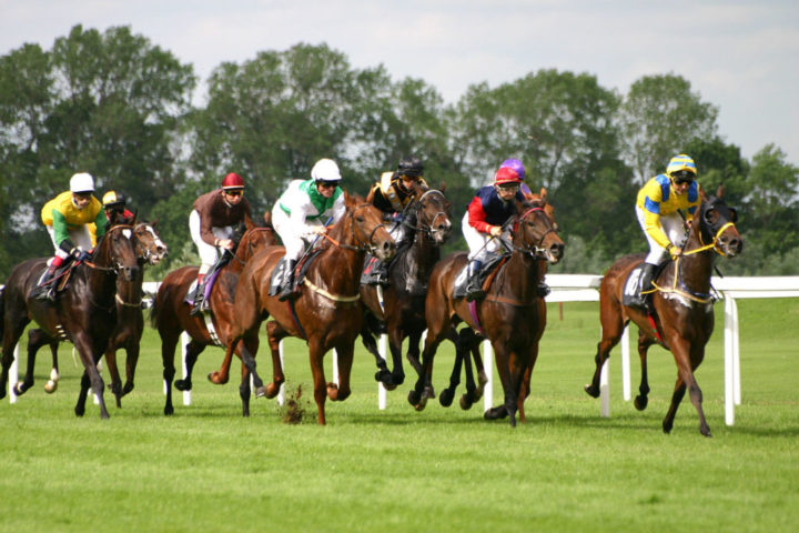Guide To Finding And Using Free Horse Racing Tips
